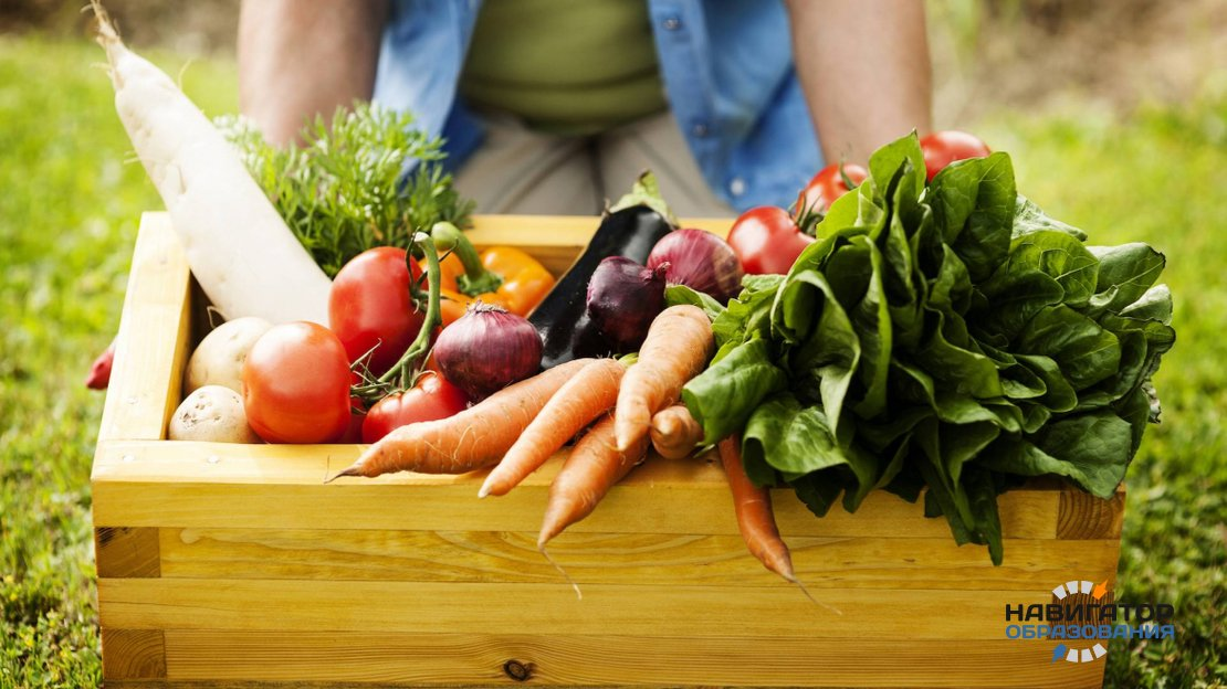 ГМО-агроном