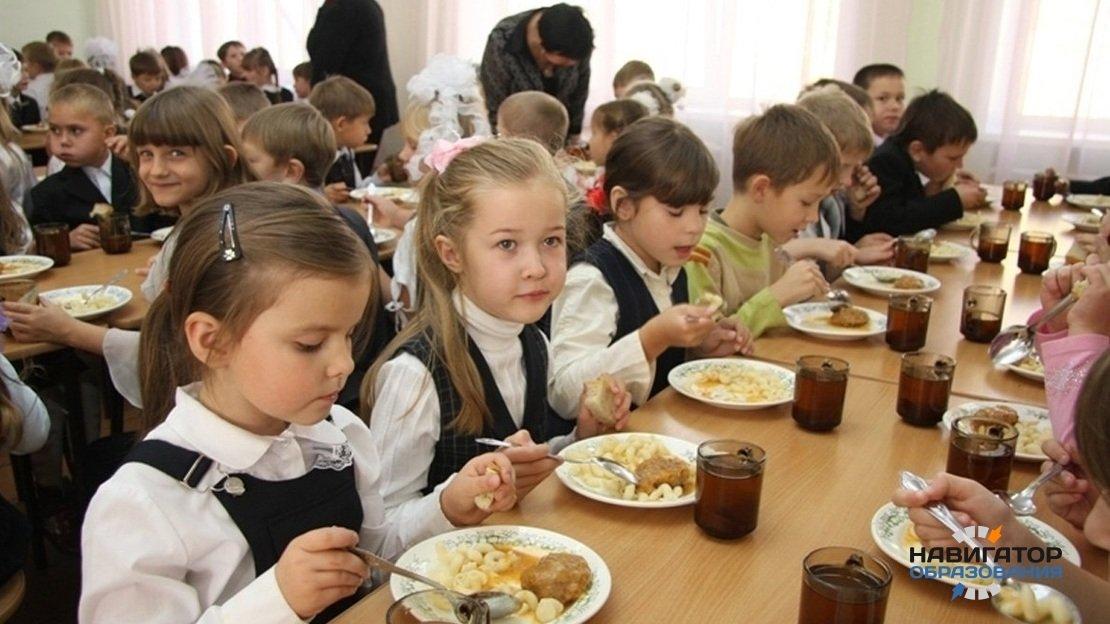 В Госдуме РФ поддержали поправки главы государства о горячем питании в школах