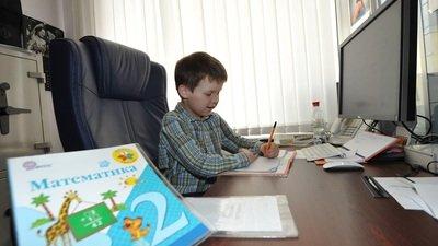 Родители обеспокоены снижением мотивации детей на онлайн-обучении