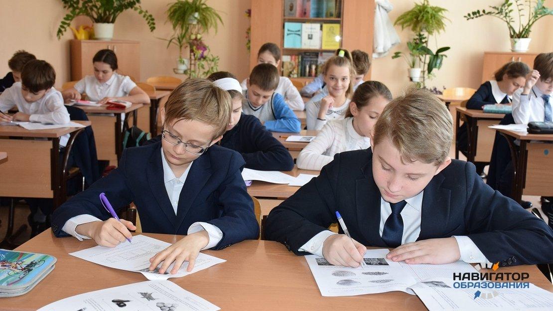 В российских школах проведут НИКО в 6-х и 8-х классах