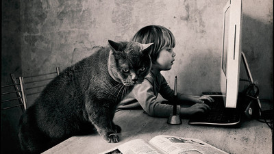 Восемь необычных историй о роли котов в образовании