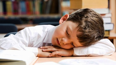 Память ребёнка улучшают поощрение и дневной сон