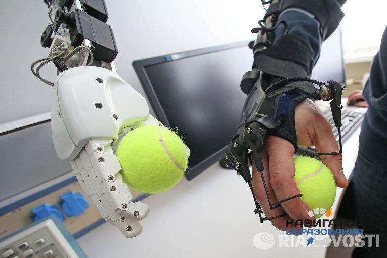 В Калининграде займутся разработкой человекоподобных роботов