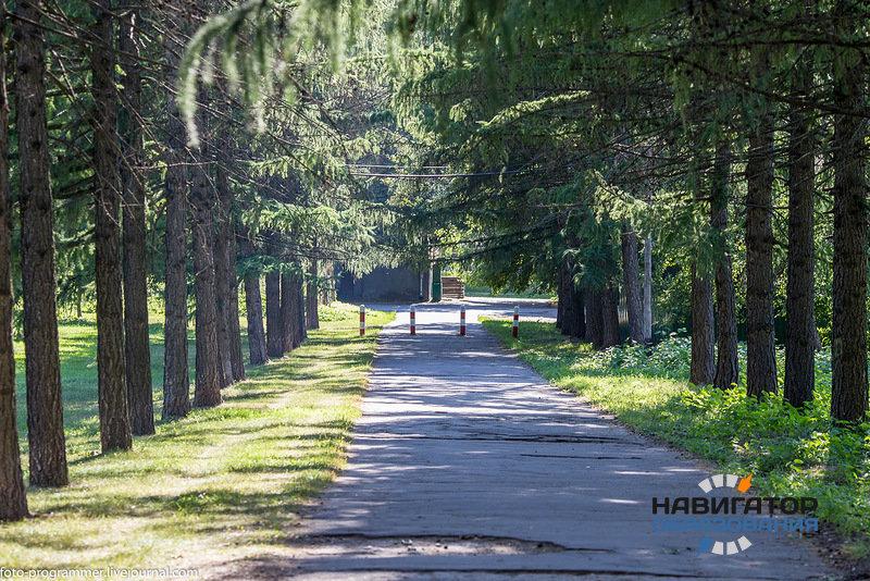 В МГУ не поддержали изъятие земель у Тимирязевской академии