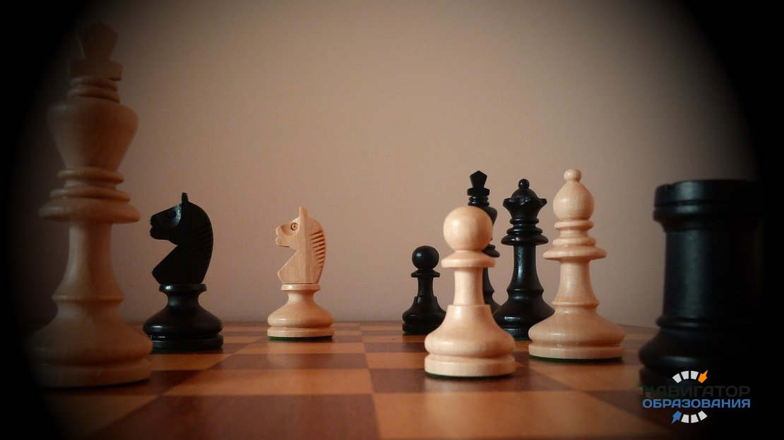 Школьники начнут изучать шахматы в течение ближайших двух лет