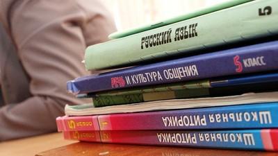 Русский язык и литература без зубрёжки