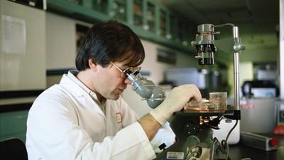 Минобрнауки РФ: доля молодых специалистов среди сотрудников лабораторий превышает 57%