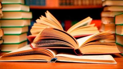 В Госдуме предлагают создать учебники по литературе на базе новой концепции