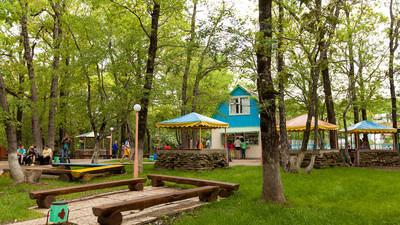 Роспотребнадзор за лето временно закрыл 43 детских лагеря