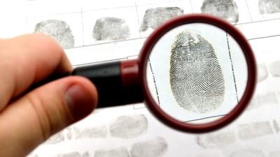 СК РФ запустил в «Артеке» программу популяризации профессии следователя