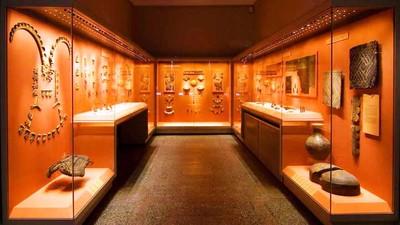 Студенты СФУ оцифровали коллекцию экспонатов Эрмитажа