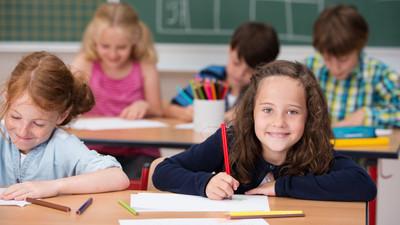 Россия стала лидером по итогам исследования качества школьного образования PIRLS