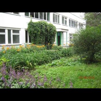Детский сад № 138 Калинка