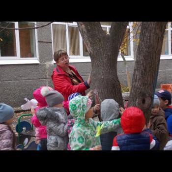 Детский сад № 493 Красная Шапочка МДОУ