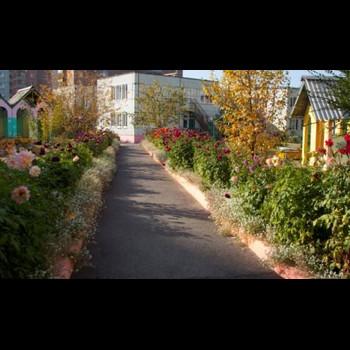 Детский сад № 50 Комбинированного Вида