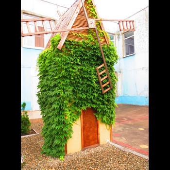 Детский сад № 220 Фестивальный