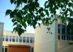 Медвенская средняя общеобразовательная школа