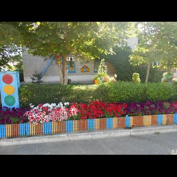 Детский сад 31