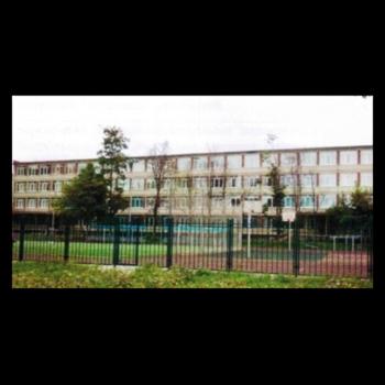 """ГБОУ гимназия № 159 """"Бестужевская"""" Калининского района Санкт-Петербурга"""