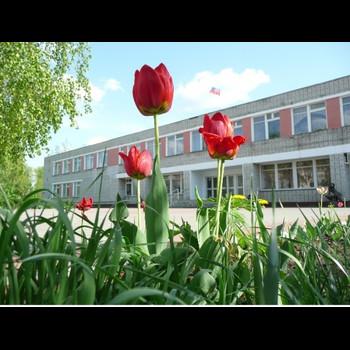 Лебедянский педагогический колледж