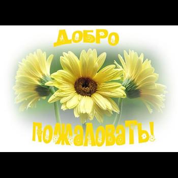 """МБДОУ """"Шемуршинский детский сад """"Ромашка"""""""